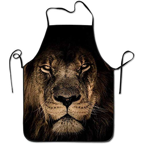 Eye Kostüm Handy - ouyjian Personalized Aprons African Lion Mane Close Eyes Funny Cooking Apron for Men Women - BBQ Grill Kitchen Chef Barbecue Gifts, One Size Fits Most
