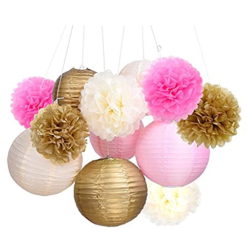 Outus Tissue Paper Pom Pom Flowers and Paper Lanterns Party Decoration, 12 Pieces