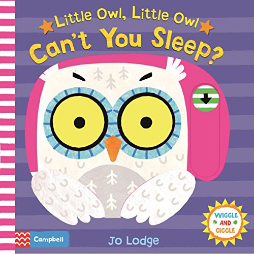 Little Owl, Little Owl Can't You Sleep? (Wiggle and Giggle, Band 5)