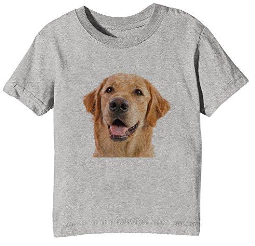 Golden Retriever Hund Rasse Kinder Unisex Jungen Mädchen T-Shirt Rundhals Grau Kurzarm Größe XL Kids Boys Girls Grey X-Large Size XL (Hund Zitat T-shirt)