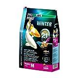 JBL 4120300Aliments d'hiver Koi, Skin Fin pour Perles, Saison Doublure, propond d'hiver, Taille M, 3600g