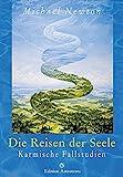 Die Reisen der Seele: Karmische Fallstudien (Edition Astroterra) - Michael Newton