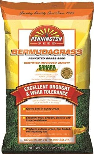 5LB Bermuda Seed, PartNo 100.085.579, von Pennington Seed Inc, Single Unit by Farmerly -