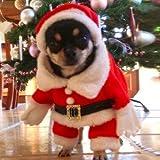 StillCool Hundemantel Hung Winter Jacken Mantel Hundekostüme Weihnachtsengel Flügel Weihnachtsmannkostüm