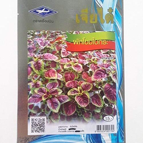 Plentree 1 Packung 50 essbare Amaranto Amaranthus Tricolore rot Gemüsesamen - 1 Pack Tri-color