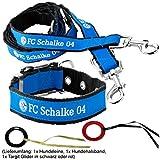 FC Schalke 04 Hundeleine und Hundehalbsband Klein