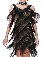 PrettyGuide Women Sequin Deco Deep V Neck Side Slit Fringe Flapper Dance Dress