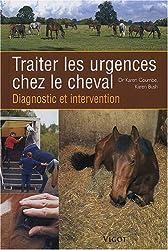 Traiter les urgences chez le cheval : Diagnostic et intervention
