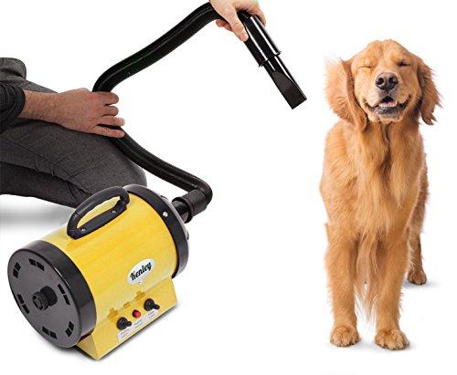 Kenley Secadora De Pelo Para Mascotas Caninas Calentadora