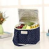 Sac isotherme Xshuai pour déjeuner et pique-nique - Portable et étanche - Tissu en toile - Pour ranger une boîte à lunch - 23,5 x 18,5 x 17,5cm , Tissu, C, Size:23.5*18.5*17.5cm