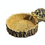 FOCUSPET Wassernapf Reptil Schildkröte Schüssel für Amphibien Decko Schlangen Eidechse Gecko
