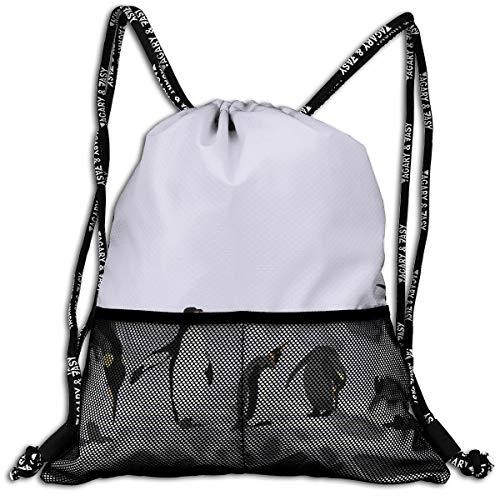 RAINNY Drawstring Backpacks Bags,Penguins On Polar ICY Land Winter Climate Arctic Cold Season Creatures Print,5 Liter Capacity,Adjustable