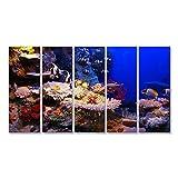 Bild Bilder auf Leinwand Unterwasser - Fische und Korallen Wandbild Leinwandbild Poster
