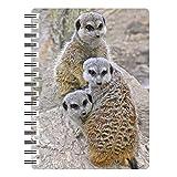 Originalgetreue Friends Sammelfiguren Erdmännchen Familie mit 33D Notebook