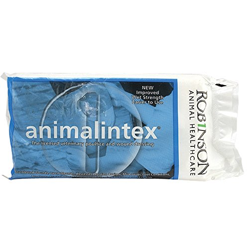 Heilung Dressings (Animalintex Erste Hilfe-Wickel für Pferde, Weiß)