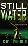 Still Water (Gallows Investigations Book 1)