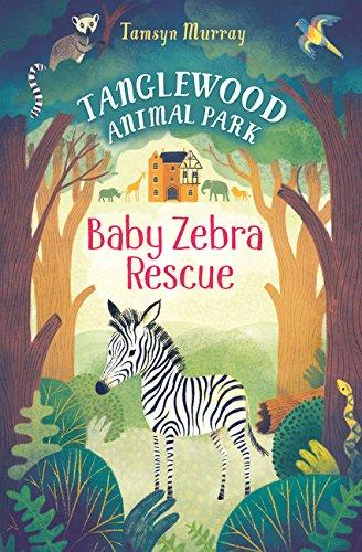 Baby Zebra Rescue (Tanglewood Animal Park)