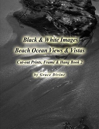 Black & White Beach Ocean Views & Vistas Cut-out Prints, Frame & Hang Book 2