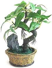 Generic Green Plant Indoor Artificial Bonsai Tree