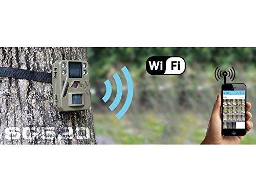 BolyGuard WildKamera Trail Kamera 12MP 720 P HD Infrarotkamera mit Nachtsicht Bewegung Aktiviert Outdo