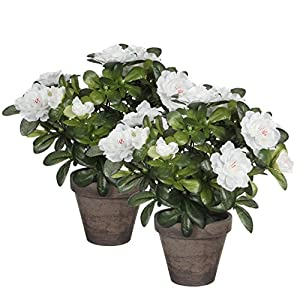 Mica decorazioni 950.330 piante T Kunstblume -e-, 2 pezzi altezza Azalea 27 cm bianchi in cachepot Stan, grigio / marrone
