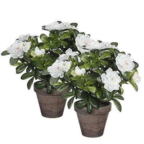 Mica Decorations 950330-T Azalea H27 Blanc En Pot Stan Gris lot de 2