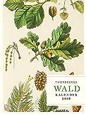Thorbeckes Waldkalender 2018: Wochenkalender mit 56 Blättern
