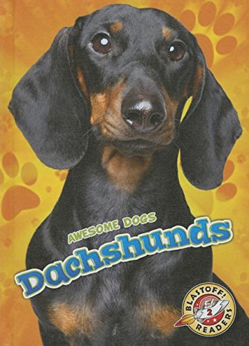 Dachshunds (Awesome Dogs)