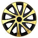 (Farbe und Größe wählbar) 16 Zoll Radkappen DRACO (Schwarz-Gold) passend für fast alle Fahrzeugtypen (universal)