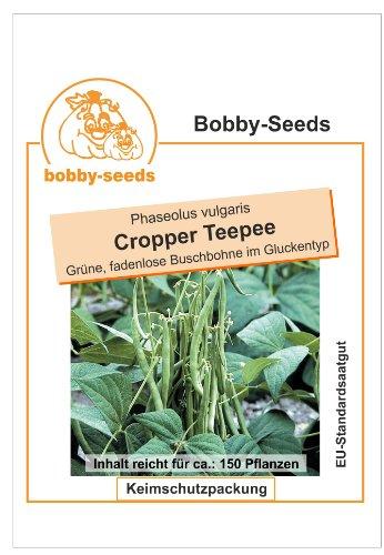 Bobby-Seeds Bohnensamen Cropper Teepee Buschbohne Portion