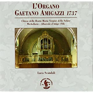 Various: L'organo Gaetano Amig