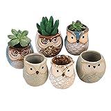 Cutogain Eule, für Sukkulenten, Kaktus-Blumentopf, Blumentopf-Container Pflanzer Bonsai Töpfe, Keramik, 6er-Set