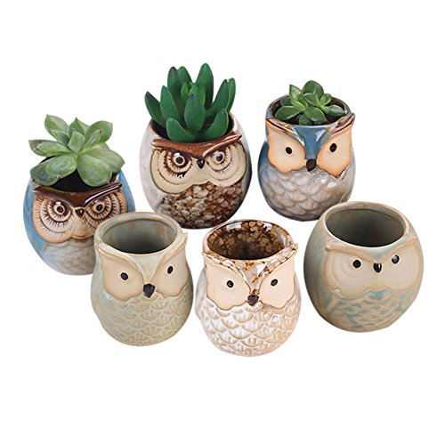 Wildlead 6Pcs/Set Ceramic Owl Pot Succulent Plant Cactus Flower Pot Container Planter Bonsai Pots