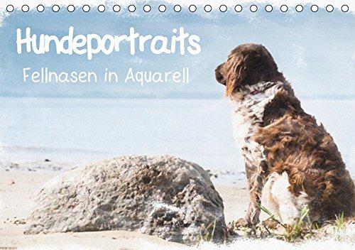 Hundeportraits - Fellnasen in Aquarell (Tischkalender 2019 DIN A5 quer): Wunderschöne Hundeportraits von der Künstlerin und Fotografin Sonja Teßen ... (Monatskalender, 14 Seiten ) (CALVENDO Tiere)