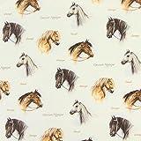 Pferde 8 — Meterware ab 0,5m — Zum Nähen von Kissen