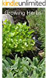Growing Herbs, How To Grow Herbs in Beds, Containers, Pots, Baskets, Window Boxes