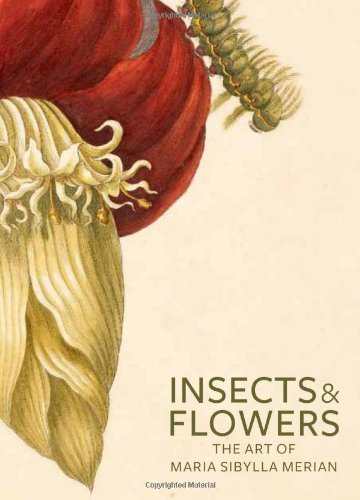 Insects and Flowers: The Art of Maria Sibylla Merian por David Brafman