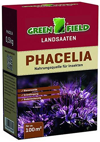 Greenfield 63735 Phacelia Gründünger 500 G pour Env. 100 Qm