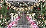 LINSUNG JUST MARRIED Wedding Bunting Cardboard Wedding Decoration, Vintage