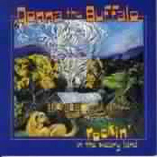 Rockin' In The Weary Land by Donna The Buffalo (1998-05-19)