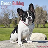 French Bulldog Calendar 2019