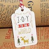 Haihuic 50 Stück weiße Pappe Tags mit Baumwoll-String, Glattes Schreiben, DIY Urlaub Geschenk Label Name Card für Hochzeitsfeier, Babyparty