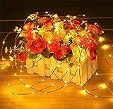 SHINEELI 300 LED Kupfer String, wasserdicht, mit Knopfbatterie, für Indoor und Outdoor Party Weihnachten Tischdekoration Warmweiß (10 Packs),Yellow - 5