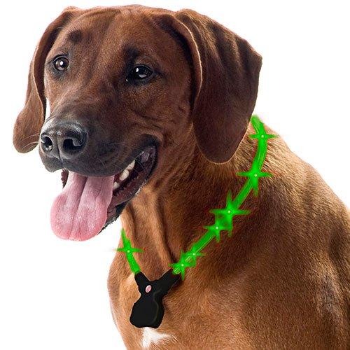 Wolters Hunde Leuchthalsband Nightshift grün 30-40 cm
