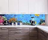 Küchenrückwand Korallenriff mit Fischen Nischenrückwand Spritzschutz Design M0480 260 x 60cm (B x H) - Acrylglas 4mm Rückwand Küche Fotorückwand Küchenbild Bild Foto Motiv Herd Fliesenspiegel Ersatz