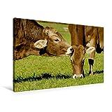 Calvendo Premium Textil-Leinwand 90 cm x 60 cm Quer, Ein Motiv aus Dem Kalender Ein Herz für Rinder | Wandbild, Bild auf Keilrahmen, Fertigbild auf Echter Leinwand, Leinwanddruck Tiere Tiere