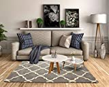Littlelooms Handmade Newly Launched Woollen Area Rugs for Living Room, Carpet for Bedroom, Modern Carpet Drawing Rooms/Study Rooms/Hall/Offices (Grey Moroccon, 4 x 6 feet)