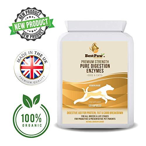 Best Paw Nutrition Reine Verdauungsenzyme für Hunde und Katzen zur Stabilisierung der Darmflora und des Durchfalls - 120 Tablets