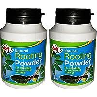 Doff - Polvo para desarrollo natural de raíces, para plantas comestibles y esquejes, 75 gr., con soporte para aplicación.
