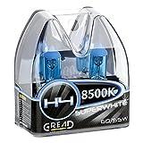 Gread H4 Box Halogen Lampen in Xenon Optik Lights | Super White | 8500k 60/55W | E-Prüfzeichen | 100% Passgenauigkeit & lange Lebensdauer